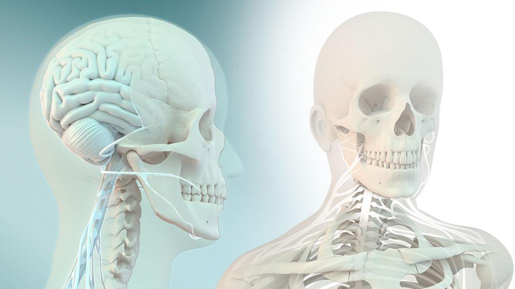 medical-3d-nerve-pain-illustration-3